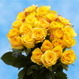 24 Stems of Yellow Roses