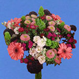 8 Extreme Delight Bouquets