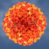 100 Stems of Bright Orange with Yellow, Caribbean Roses                                                              For Delivery to Louisiana