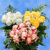 3 Dozen of Assorted Color Roses with Fillers