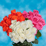 3 Dozen Assorted Color Roses                                                              For Delivery to Hawaii