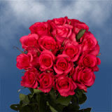 50 Stems of Almost Red, Hot Paris Roses