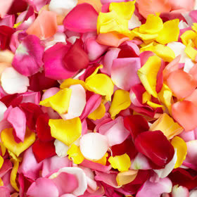 Rose Petals Choose Your Quantity & Color  From 3500 - 5000 Petals                                                              For Delivery to Oregon