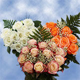 16 Dozen Assorted Colors of Roses & Fillers