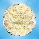 100 Stems of White with a Touch of Green, Escimo Roses