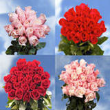 Sweetest Day Ideas 50 Red Roses & 50 Pink Rose                                                              For Delivery to Arkansas