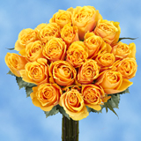 50 Stems of Golden Yellow, Euforia Roses