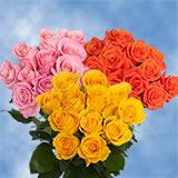 12 Dozen Your Choice Color Roses                                                              For Delivery to Utah