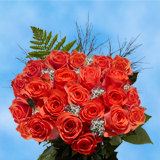 24 Stems of Orange Roses with Fillers