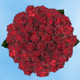 200 Stems of Dark Red, Black Baccara Roses                                                              For Delivery to Goose_Creek, South_Carolina