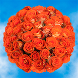 100 Stems of Bright Orange                                                              For Delivery to West_Virginia