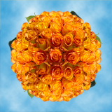 250 Stems of  Yellow Roses with Orange Tips, Kerio Roses