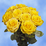 50 Stems of Yellow with a Touch of Red, High & Yellow Roses