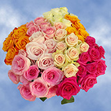 50 Roses Two Assorted Colors