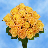 50 Stems of Yellow Valentine's Day Roses