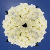 250 Assorted White Roses