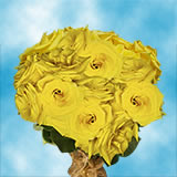 50 Stems of Yellow Coral Roses                                                              For Delivery to Louisiana