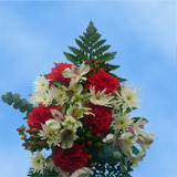 9 Snow Christmas Bouquets
