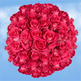 150 X Long Stems of Bright Hot Pink, Topaz Roses
