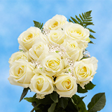 12 Stems of Ivory Roses with Fillers
