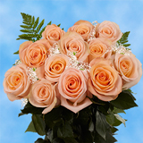 12 Stems of Peach Roses with Fillers