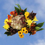 2 Fall Equinox Bouquets