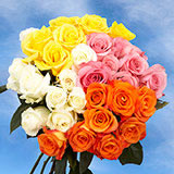 100 Birthday Roses Four Assorted Colors