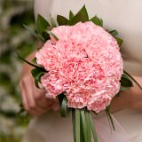 6 Pink Carnations Bridesmaids Bouquets