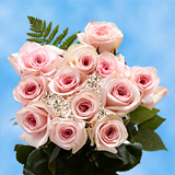 12 Stems of Pink Roses with Fillers