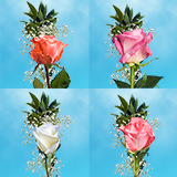 25 Single Assorted Color Rose Bouquet with Fillers