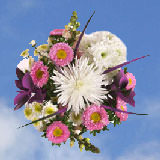 2 for 1 Imaginative Bouquets                                                              For Delivery to Idaho