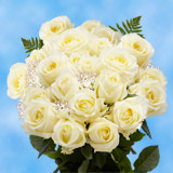 24 Stems of Ivory Roses with Fillers