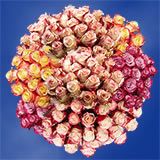 50 Stems of Multi-Color Wedding Roses