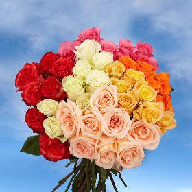 75 Assorted Color Roses