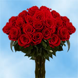 75 Next Day Red Roses