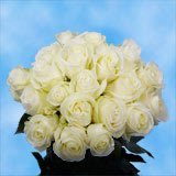 50 Stems of White, Proud Roses