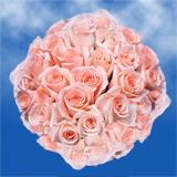 100 Stems of Peachy Pink, Engagement Roses                                                              For Delivery to Mississippi