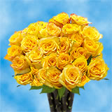 50 Yellow Next Day Roses