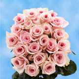 24 Stems of Pink Roses