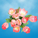 60 Stems of Pink Tulips
