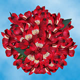 120 Blooms of Red Select Alstroemerias 30 Stems