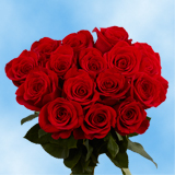 100 Stems of Red Roses                                                              For Delivery to Hawaii
