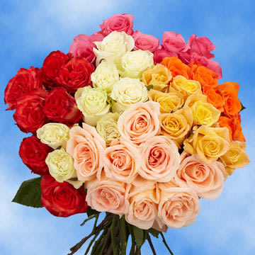 50 Roses 2 Assorted Colors Next Day Roses                                                              For Delivery to Oregon