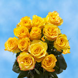 12 Stems of Yellow Roses                                                              For Delivery to Nebraska