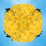100 Stems of Bright Yellow, Gold Strike Roses                                                              For Delivery to Virginia