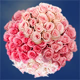100 Assorted Pink Roses