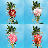 25 Single Assorted Color Rose Bouquet with Fillers                                                              For Delivery to Minnesota
