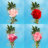 70 Valentine's Day Single Assorted Color Rose Bouquet with Fillers