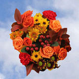 7 Turkey Flower Bouquets                                                              For Delivery to Washington