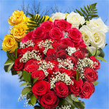 Choose Your Quantity of Two Dozen Roses